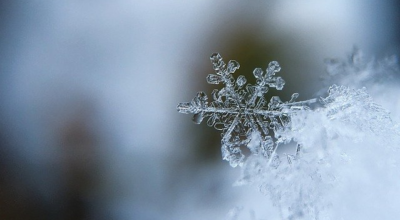 Avviso di condizioni meteorologiche avverse per gelate il 14-15-16 Febbraio